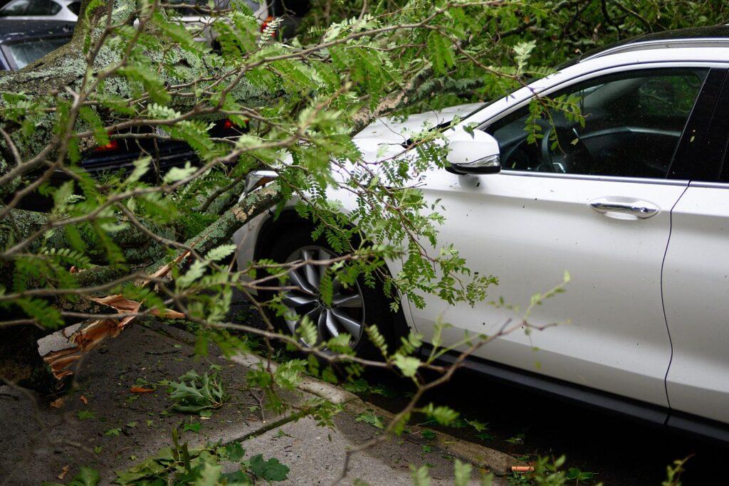 pourquoi assurer sa voiture tous risques ?